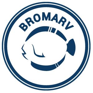 Bromarv - En skärgårdsby i Västranyland